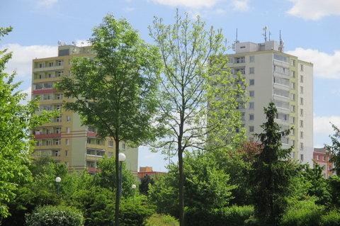 FOTKA - Začátkem května