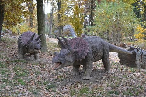 FOTKA - Triceratops