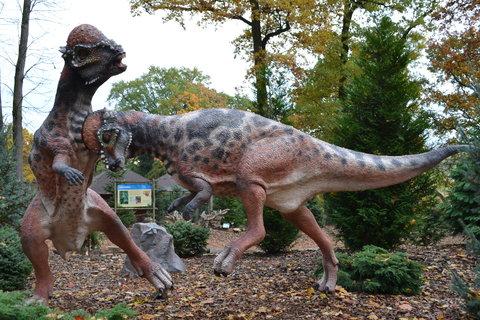 FOTKA - Pachycephalosaurus
