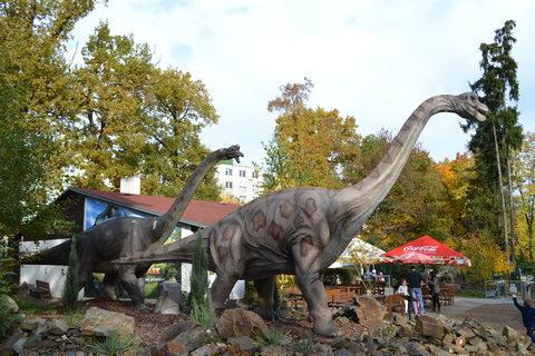 FOTKA - Brachiosaurus páru