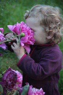 FOTKA - To ale krásně voní