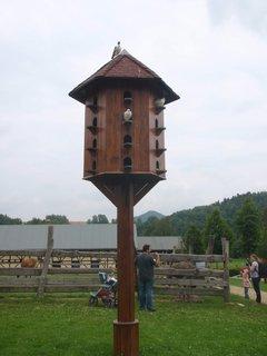 FOTKA - holubník