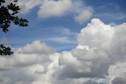 FOTKA - Dnes  dopoledne - vid�m  letadlo