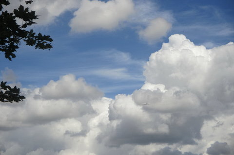 FOTKA - Dnes  dopoledne - vidím  letadlo