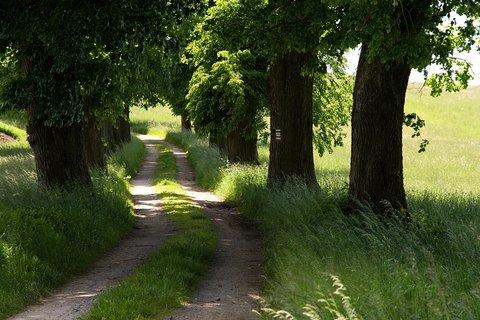 FOTKA - Cesta na Weifberg