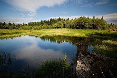 FOTKA - Malý Radní rybníček...
