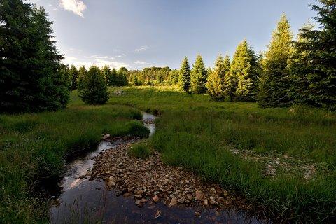FOTKA - Flájský potok ve Vilejšově
