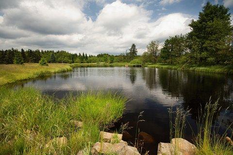 FOTKA - Nový rybník u Svahové