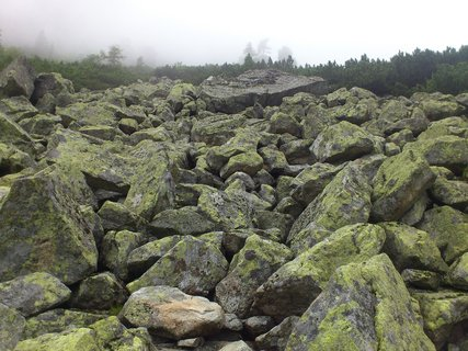 FOTKA - Vysoké Tatry - kameny