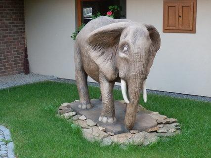 FOTKA - slon - dílo Michala Olšiaka v obci Sázava nedaleko Žďáru nad Sázavou