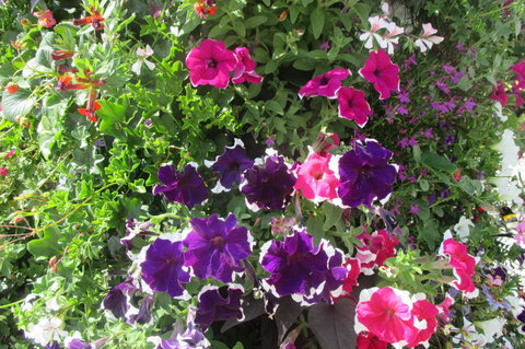 FOTKA - Květinová věž  anebo Květinový sloup