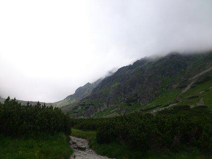 FOTKA - Vysoké Tatry - Škutnastá Poĺana, cestička