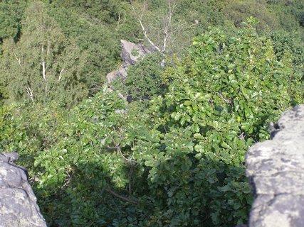 FOTKA - Nechtěla bych spadnout do takové průrvy.Želenický kopec,okraj bývalého kamenolomu.