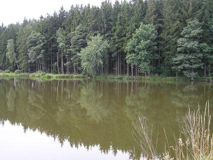 FOTKA - zrcadlení v rybníku