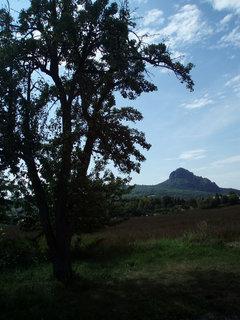 FOTKA - Hora a stín stromu