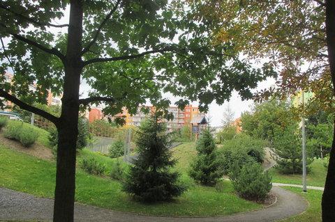 FOTKA - Sportovní hřiště  pěkně  zarůstá  zelení