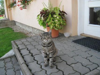 FOTKA - čeká na mě