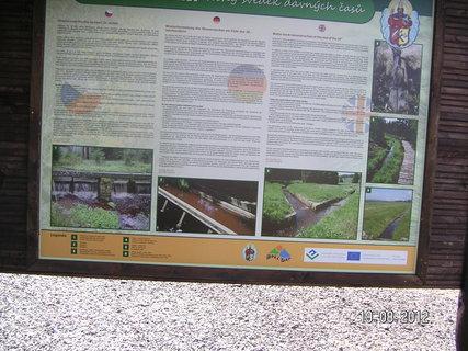 FOTKA - Ukázka z rašeliniště