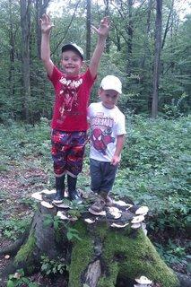FOTKA - deti v lese na houbách