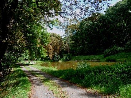 FOTKA - Kostomlaty p. Milešovkou - cesta na hrad