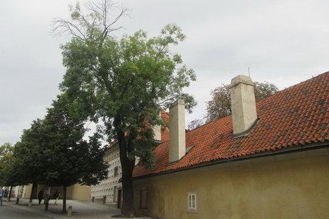 FOTKA - Směr Pražský hrad