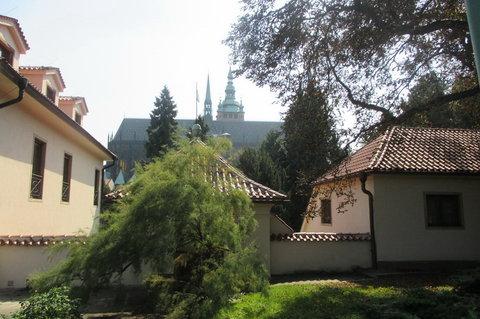 FOTKA - Královská zahrada  - za vchodem   z  ul.  U Prašného mostu