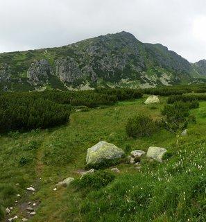 FOTKA - Vysoké Tatry - cestička podél porostu