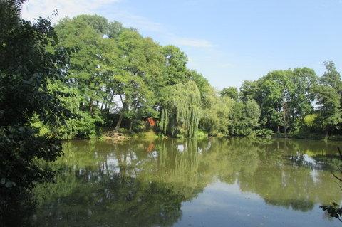 FOTKA - Ctěnický rybník