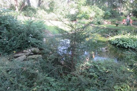 FOTKA - Září v Chotkových sadech - rybníček