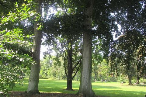 FOTKA - Září v Chotkových sadech - výhled z lavičky
