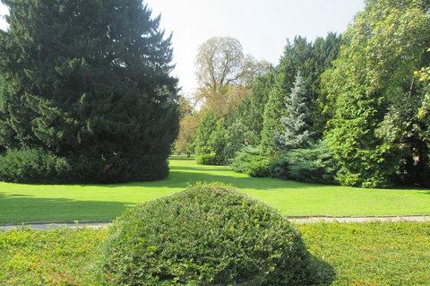 FOTKA - Praha zelená -  Královská zahrada