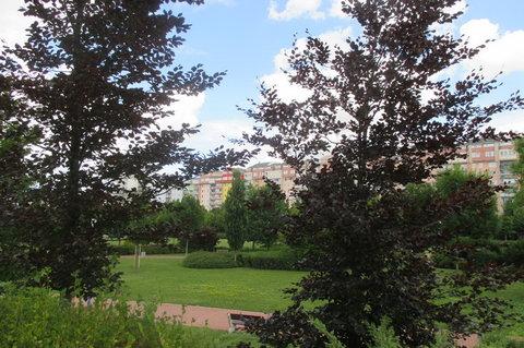 FOTKA - Praha zelená -  Park  OC