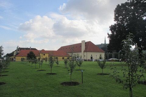 FOTKA - Produkční zahrady Pražského hradu ( Lumbeho zahrady)