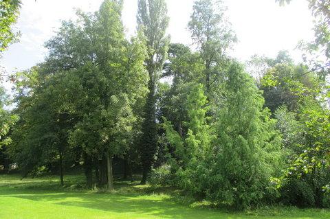 FOTKA - Ctěnický zámecký areál  -  park i ostatní objekty jsou památkově chráněny