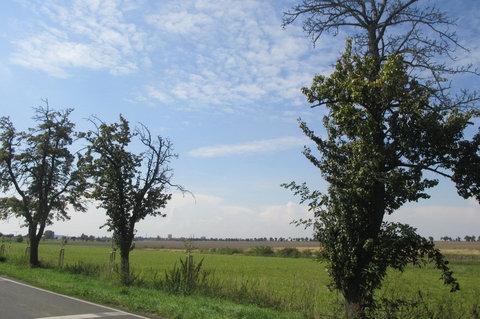 FOTKA - Ctěnice - před zámeckým areálem