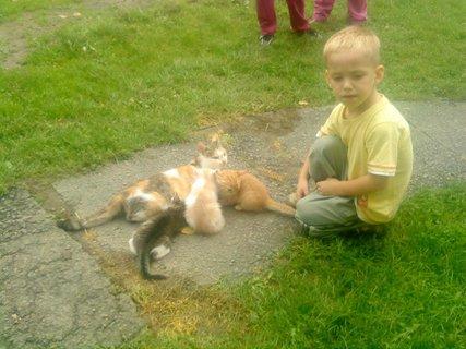 FOTKA - Samko s kočičkami
