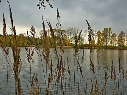 FOTKA - Podzimní.