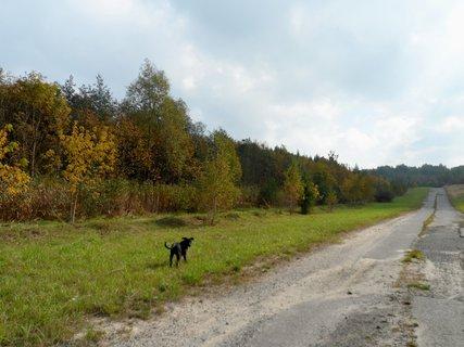 FOTKA - Podzim a Ritunka