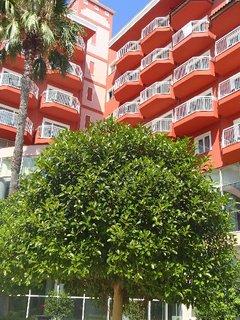 FOTKA - Turecko-zeleň pri hoteli