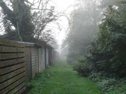 FOTKA - do mlhy