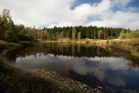 FOTKA - Bachmaňák