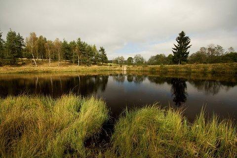 FOTKA - Načetínský rybník