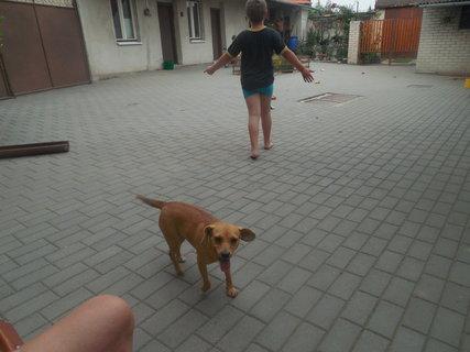 FOTKA - Mamko,vyfoť Aju