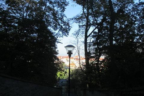 FOTKA - Cestou z Petřína