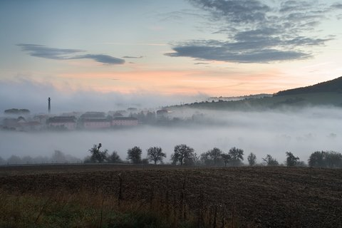 FOTKA - Braňany v mlze