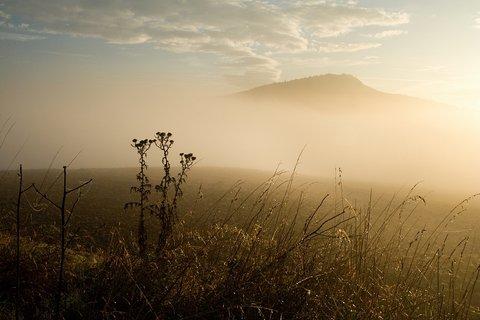 FOTKA - Kaňkov v mlze