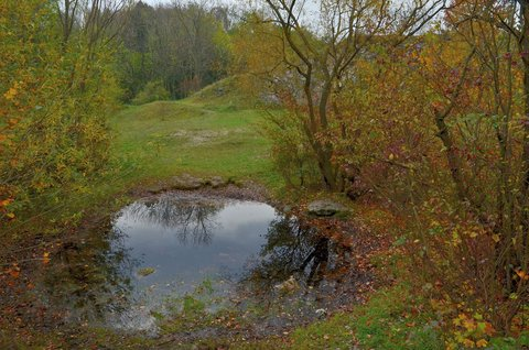 FOTKA - Oko podzimu