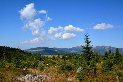 FOTKA - Jedná se o největší rašeliniště lesního typu v Krkonoších. Rašeliniště vzniklo před zhruba 6000 lety, díky kyselému ortorulovému podloží a příhodným přírodním podmínkám. Rašelina, vzniklá především z odumřelých těl rašeliníku zde dosahuje mocnosti 2,