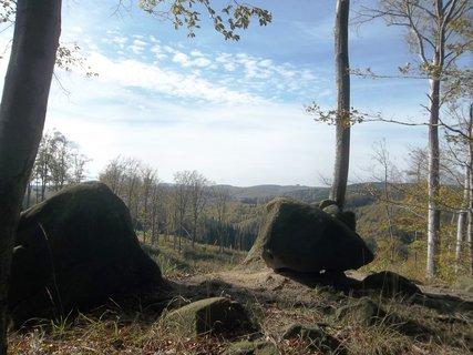 FOTKA - Výhled v lese na Bunči