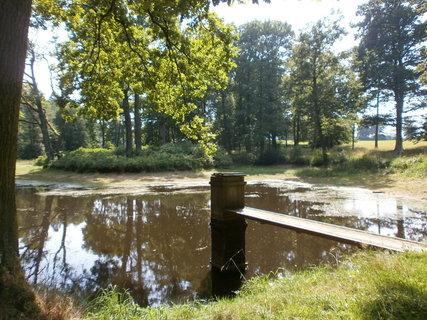 FOTKA - rybník u tvrze Cuknštejn